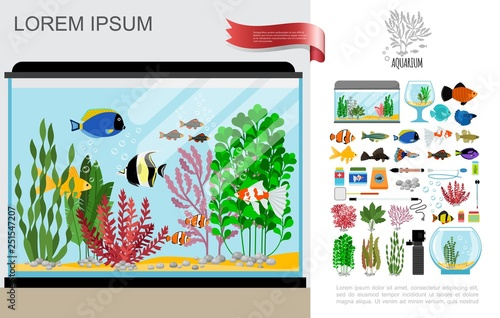 Foto Flat Beautiful Aquarium Composition