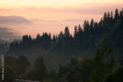 Poster Morning with fog Breathtaking morning dawn in Carpathian mountains. Mountain and forest under sunrise sky. Beautiful wildlife landscape in the morning.