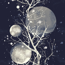 Imprints Branches And Moon In ...