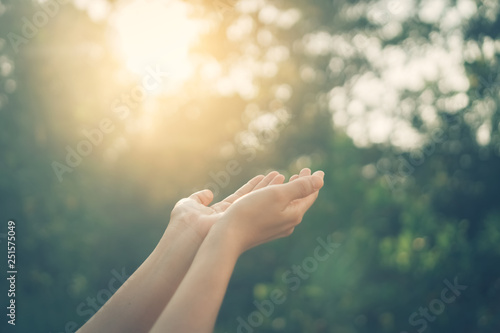 Foto  Woman open hand up to sunset sky and green blur leaf bokeh sun light abstract background