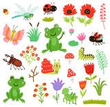 Fototapeta Fototapety na ścianę do pokoju dziecięcego - Frog and insects vector set