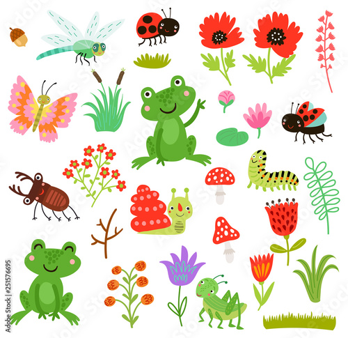 Frog and insects vector set © Guz Anna