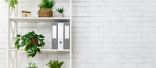 White Bookshelf With Plants An...