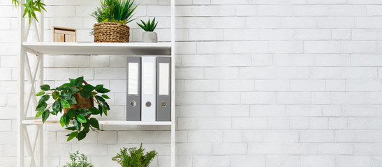 White bookshelf with plants and folders over wall