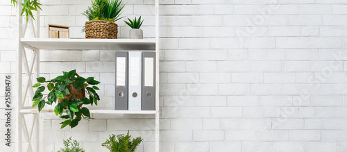 White bookshelf with plants and folders over wall Wallpaper Mural