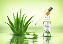 Aloe Vera Plant With Fresh Drops And Dropper Glass Bottle. Collagen Serum Package Mockup. Beauty Cosmetics  Product Ads Poster Template. Realistic 3d Vector Illustration On Water Ripple Background