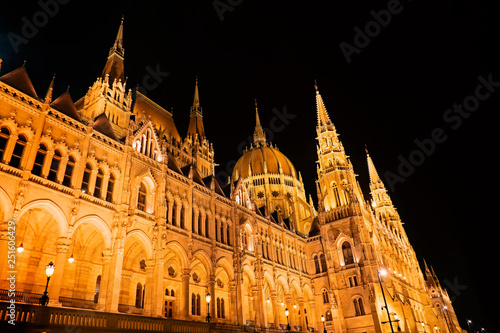 Fotografie, Obraz  The Hungarian Parliament Building by night