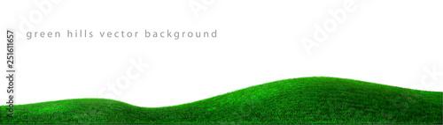 Obraz Vector green hills background realistic landscape - fototapety do salonu