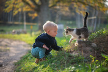 Boy Playing With Cat Outdoors