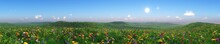 Panorama Of A Flower Meadow, Flower Hills View, Grass And Flowers Under A Blue Sky, Flowering Slope Under The Sun, Hills In Flowers, Green Hills With Flowers
