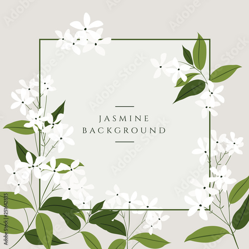 Photographie Vector jasmine flower banners