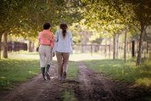 Rear View Of Two Women Walking...