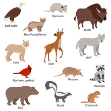 North American Animals Set Wit...