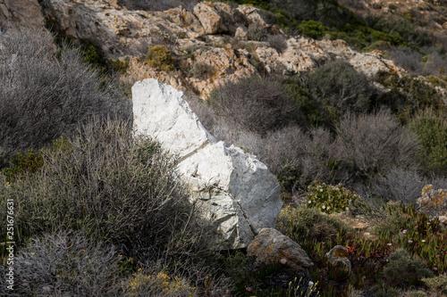 Cuadros en Lienzo Rocher dans le maquis - Pointe de la Revellata