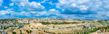 Jerusalem Viewed From The Moun...