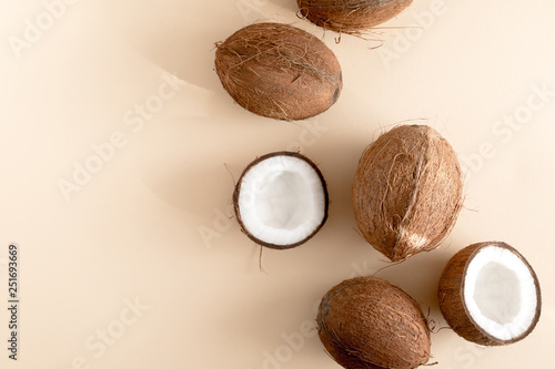 Fotografie, Obraz Summer composition with coconut