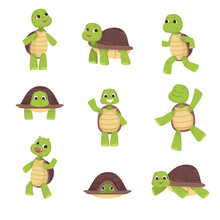 Set Of Cute Green Turtles With...
