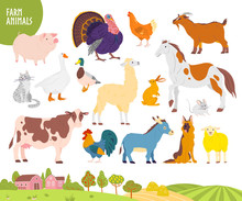 Vector Set Of Farm Animal: Pig...