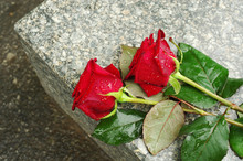 Two Red Roses On A Granite Sla...