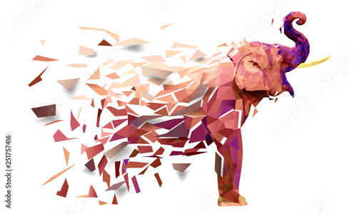 Photo Elephant Low poly multicolored,Geometric pattern design, eps10 vector