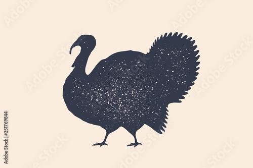 Carta da parati Turkey, bird. Concept design of farm animals