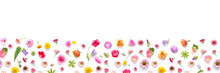 Flowers Banner Flat Lay.