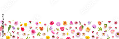 Photo sur Toile Fleur Flowers banner flat lay.