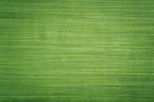 Green Textile Wallpaper Texture Close Up
