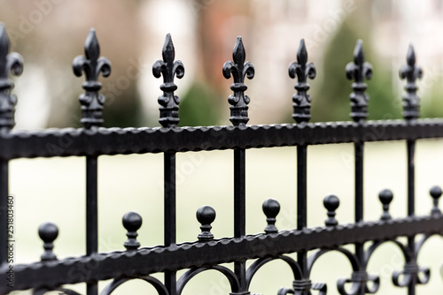 Canvas Print Metal wrought iron fence