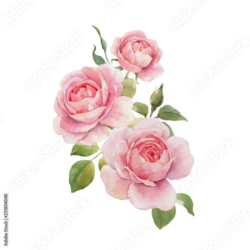 Watercolor rose vector omposition
