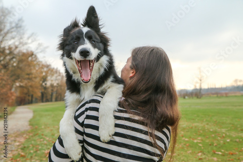 Carta da parati A young border collie puppy is carried by his owner and looks like he screams