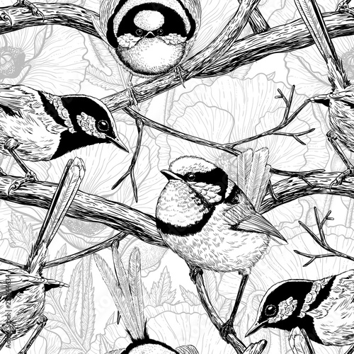 Valokuva  Seamless pattern made of hand drawn fairy wrens