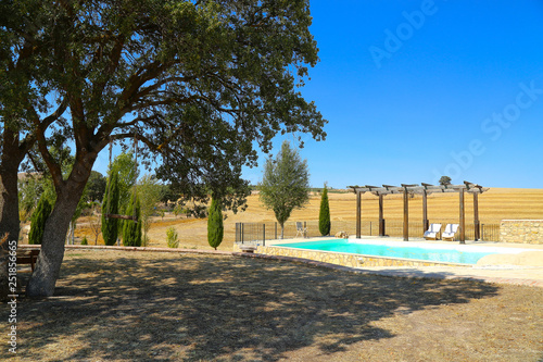 Fotografía  big private pool at rural landscape with oak tree at the side and blue clear sky