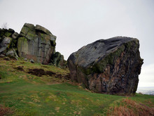 Cow And Calf Rocks At Ilkley Moor, Yorkshire