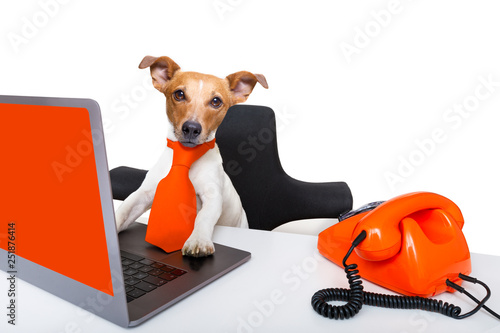 Foto op Canvas Crazy dog boss management dog in office