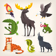 Colorful cartoon animals from different regions and places. Isolated vector images