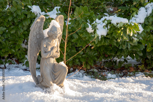 Fotografía  sculpture of praying angel on grave at municipal cemetery in Amsterdam, The Neth
