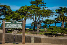 Lovers Point Park On The Monterey Peninsula In Pacific Grove, In Central California, With Monterey Cypress And Palm Trees, Sits On A Bluff Overlying A Sandy Beach Below.