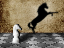 Chess Horse With Shadow As A W...