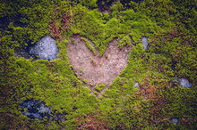Engraved Heart Shaped Sign On A Stone, Covered By Moss And Musk Around In A Public Park