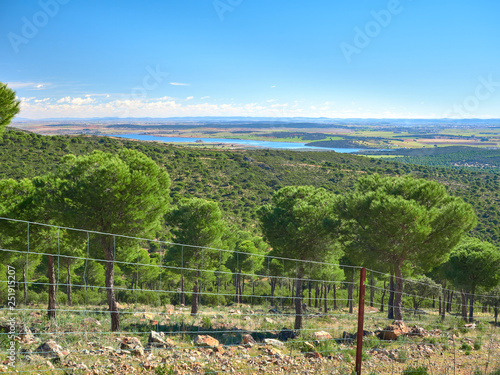 Landscape View of a Pine Forest from the Montes de Toledo Mountain Range with the Vicario Reservoir of the Guadiana River in the Background, Ciudad Real, Castilla La Mancha, Spain