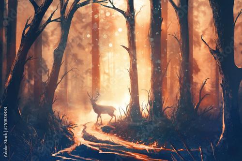 Obraz Illustration of a deer in warm forest - fototapety do salonu