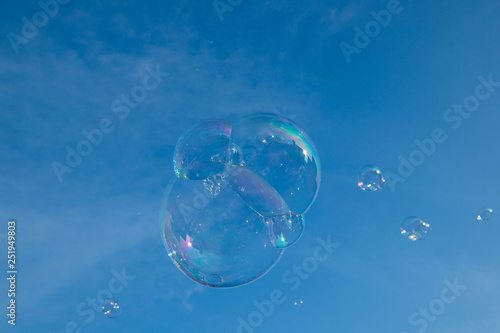 Fotografie, Obraz  Soap bubbles in the air isolated on the blue sky