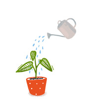 Watering Of Home Plant With Green Leaves In Orangle Pot. Hand Drawn Illustration Of Home Gardening, Symbol Of Care And Growth.