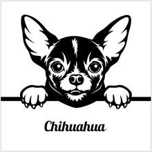 Chihuahua - Peeking Dogs - - B...