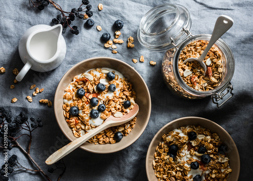 Homemade granola with greek yogurt and blueberries on a grey background, top view Canvas Print