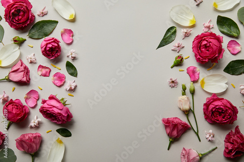top view of floral frame made of pink roses and petals isolated on grey with copy space
