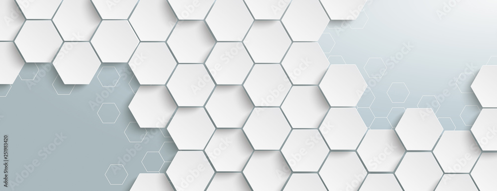 Fototapety, obrazy: White Hexagon Structure Grey Edges Header