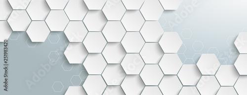 Fototapeta White Hexagon Structure Grey Edges Header