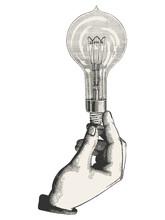 Man's Hand Holding A Bulb - Ve...